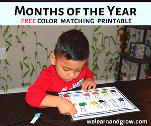 Months of the Year activity for kids